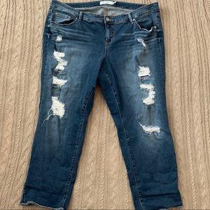 Torrid Distressed Cut off denim jeans